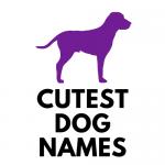 Cutest Dog Names Logo