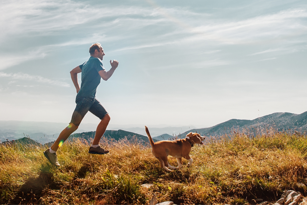 man jogging with brown dog - best dogs for runners